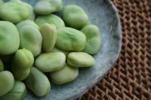 800px-broad-beans-after-cooking