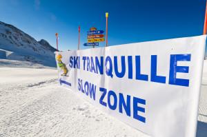 Les 2 Alpes - copyright D.A.L  yoann pesin -  3 (2)