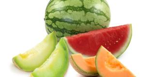 Watermelon-melon