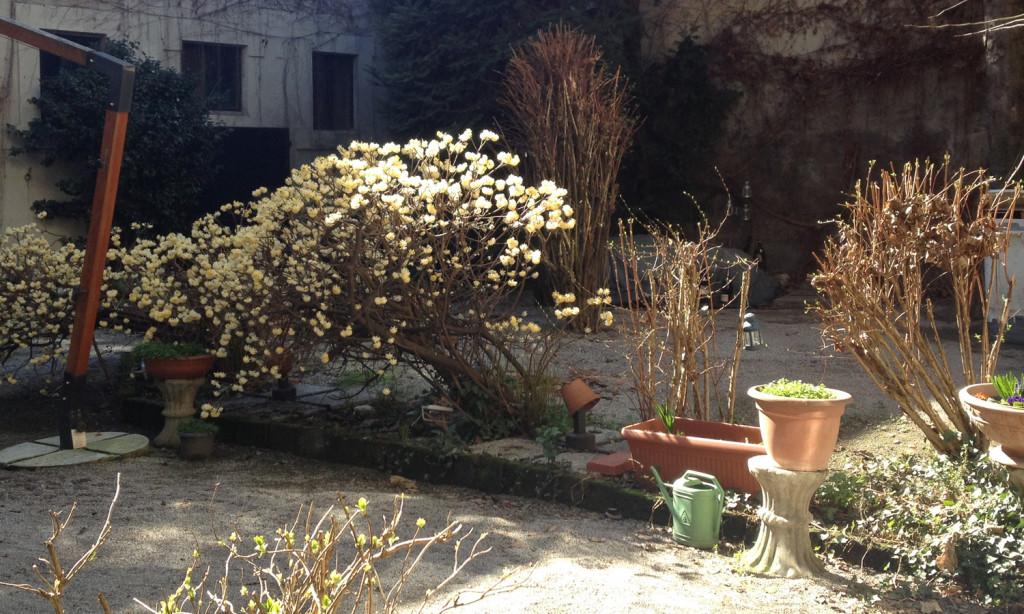 crema_ridottino_giardino