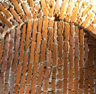 Oiloco, #DiGusto, Apicio. 3 format da scoprire.