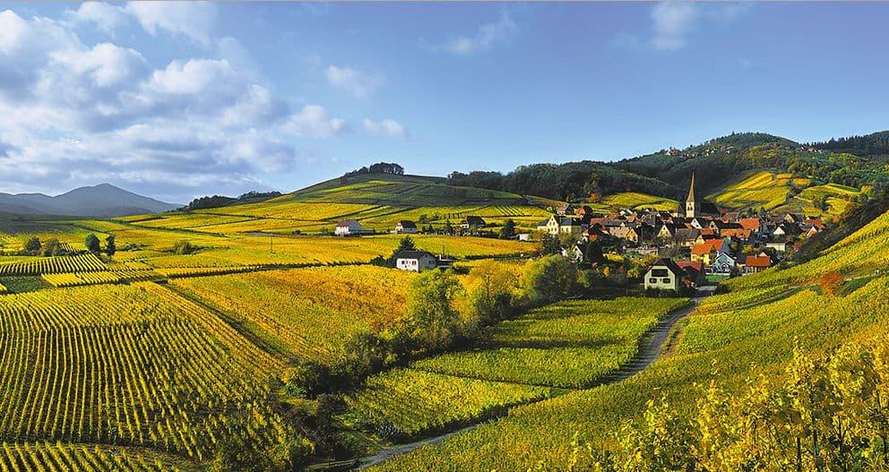 Alsace_route_des_vins